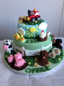 Charlie Naming Day Cake